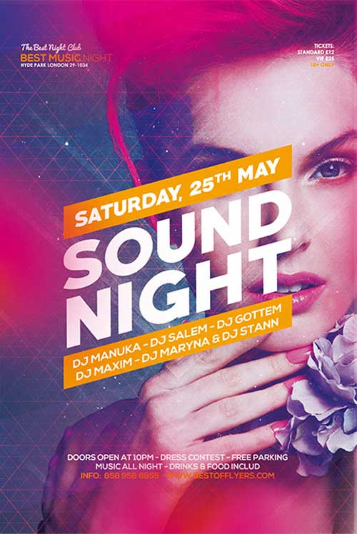 Free Sound Night Party Flyer and Poster Template